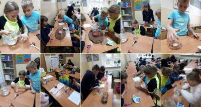 Doświadczenia przyrodnicze na lekcji przyrody w klasie IV